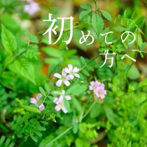 hajimete_ai